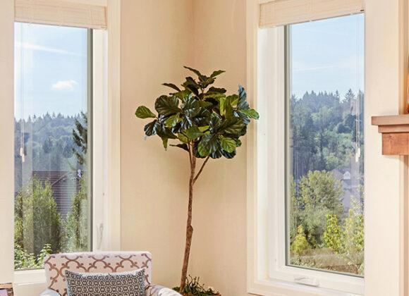 Windows in Cary NC, Clayton NC, Durham, North Carolina, Raleigh, Sanford NC